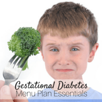 Gestational Diabetes Menu Plan